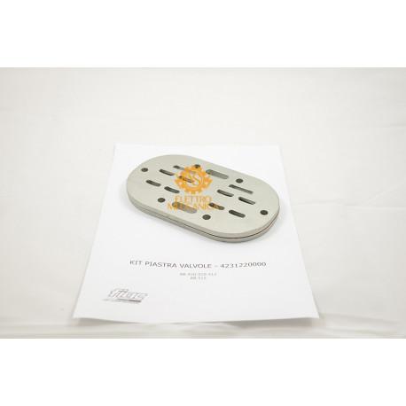 Valve plate kit for FIAC AB 410 AB 510 AB 512 Pumping units