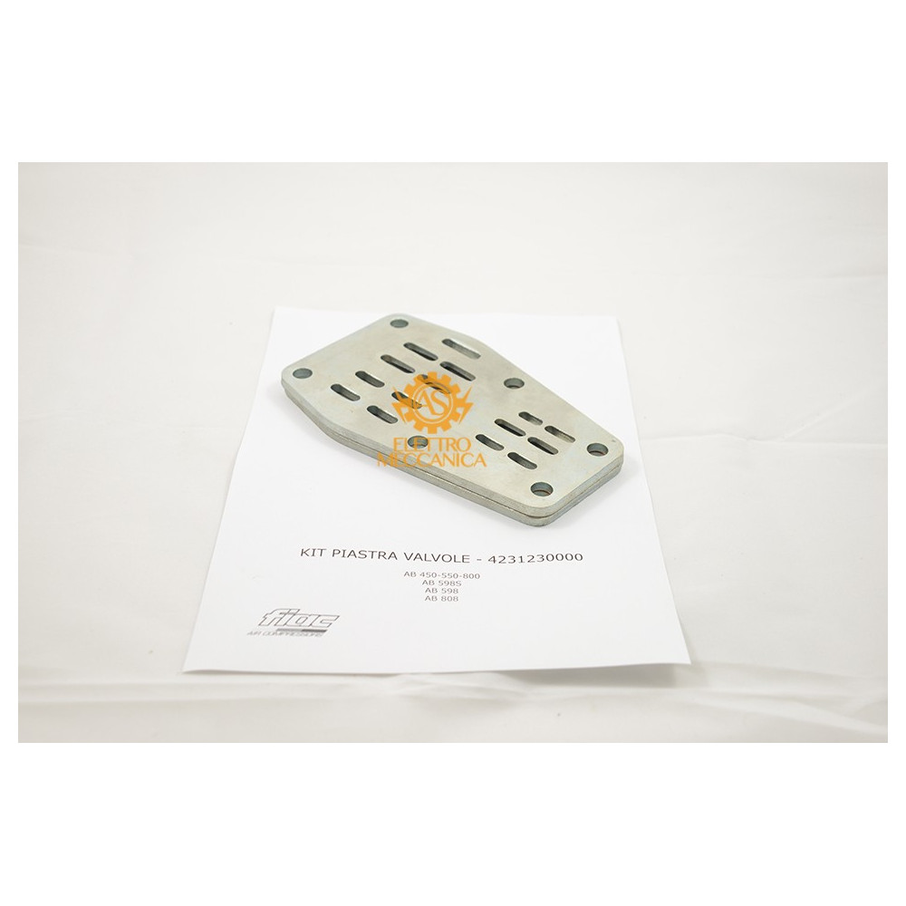 Kit Piastra Valvole  per Gruppi Pompanti Fiac AB 450 - AB 550 - AB 598 - AB 800