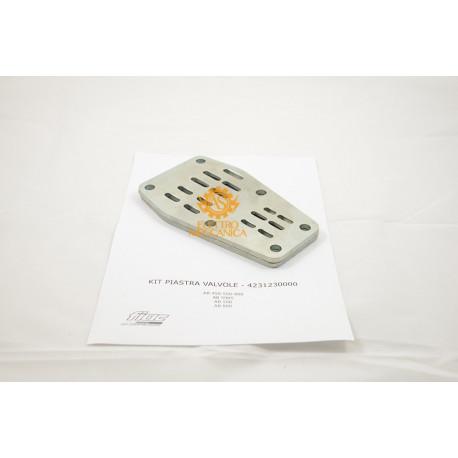 Valve plate kit for FIAC AB 450 - AB 550 - AB 598 - AB 800