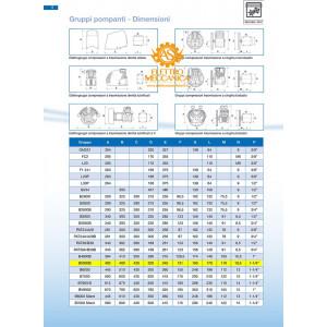 Gruppo Pompante Abac B5900 Con Filtro E Volano