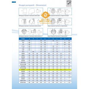 Gruppo Pompante Abac B4900 Con Filtro E Volano